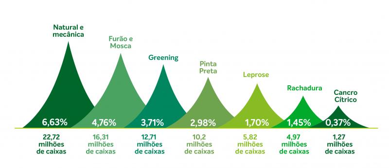 Taxa de queda de frutos bate recorde na safra 2020/2021 - Fundecitrus